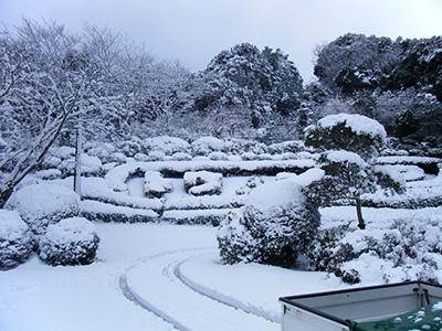 東庄県民の森・雪1