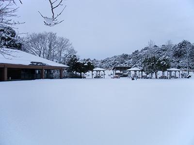 東庄県民の森・雪2