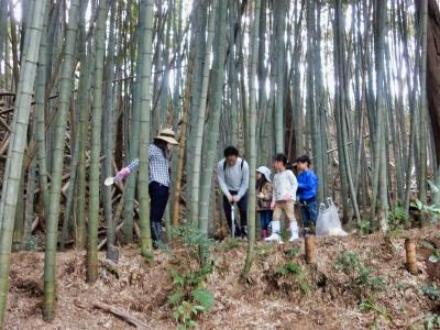 タケノコ掘り体験