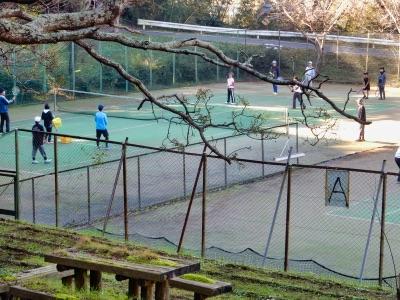 テニス教室-3