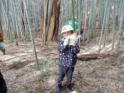 ~親子で収穫体験~「タケノコ」